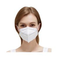 KN95 Mask (2 pcs)